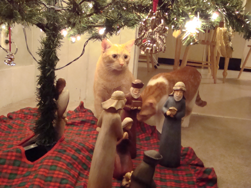 Were there cats at Jesus' birth?